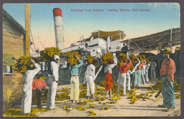 Postcard showing Jamaican workers loading bananas in Port Antonio, Jamaica, ca. 1905.