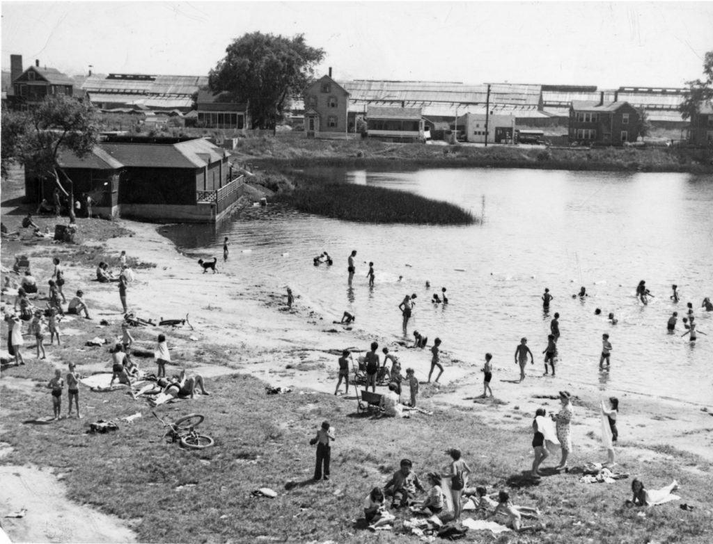 Jerry's Pond, a former clay pit in North Cambridge, was a popular swimming hole in 1945. In the background is Rindge Avenue and the brick- drying sheds of New England Brick Company where generations of Irish and French Canadians worked.